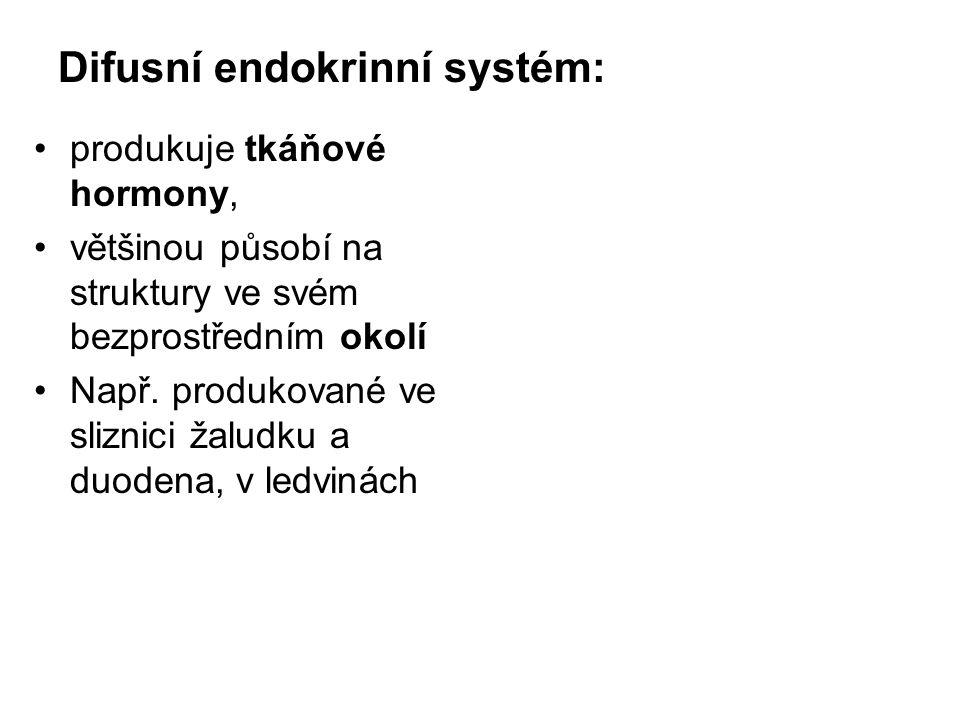 Difusní endokrinní systém: produkuje tkáňové hormony, většinou působí na struktury ve svém bezprostředním okolí Např. produkované ve sliznici žaludku