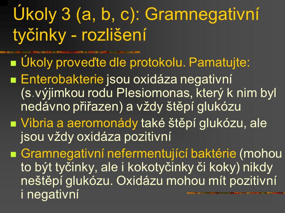 Úkoly 3 (a, b, c): Gramnegativní tyčinky - rozlišení Úkoly proveďte dle protokolu. Pamatujte: Enterobakterie jsou oxidáza negativní (s.výjimkou rodu P