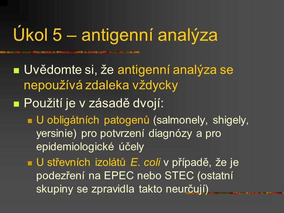Úkol 5 – antigenní analýza Uvědomte si, že antigenní analýza se nepoužívá zdaleka vždycky Použití je v zásadě dvojí: U obligátních patogenů (salmonely