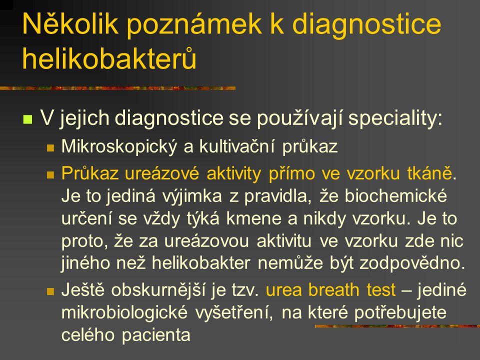 Několik poznámek k diagnostice helikobakterů V jejich diagnostice se používají speciality: Mikroskopický a kultivační průkaz Průkaz ureázové aktivity