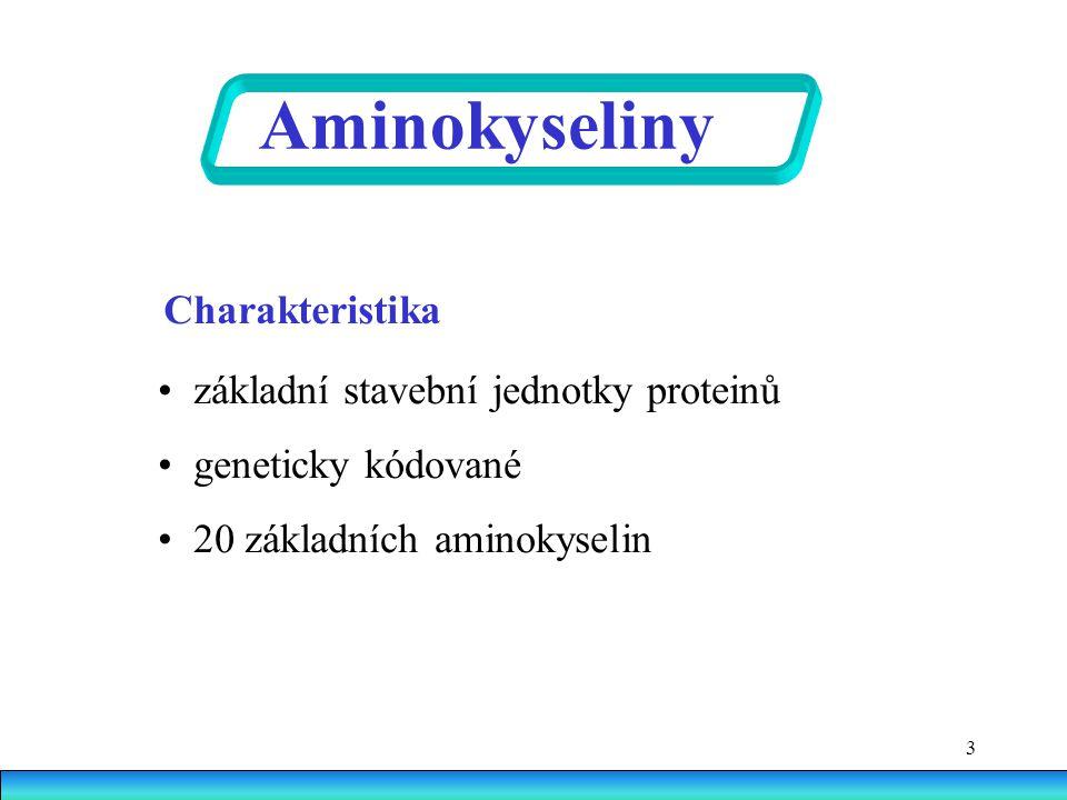 3 Charakteristika základní stavební jednotky proteinů geneticky kódované 20 základních aminokyselin Aminokyseliny
