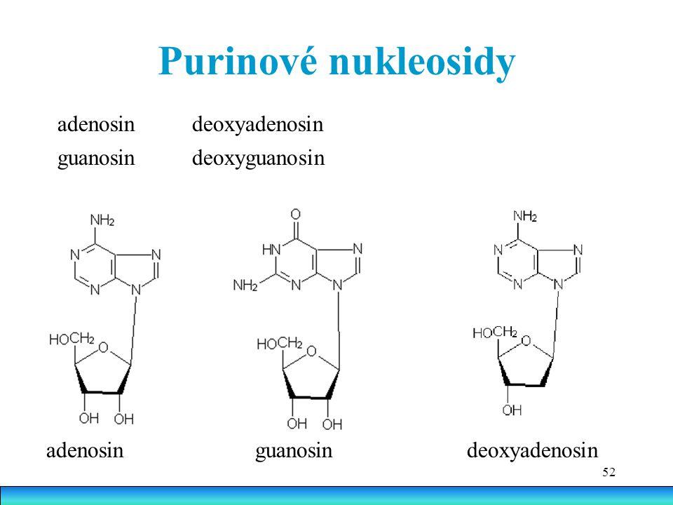 52 Purinové nukleosidy adenosin guanosindeoxyadenosin adenosindeoxyadenosin guanosindeoxyguanosin