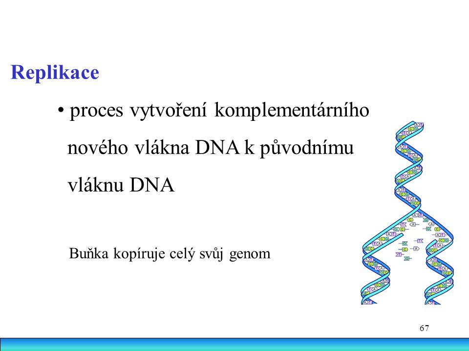 67 Replikace proces vytvoření komplementárního nového vlákna DNA k původnímu vláknu DNA Buňka kopíruje celý svůj genom