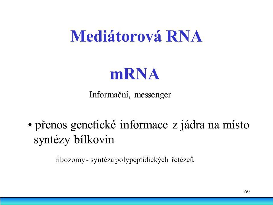 69 Mediátorová RNA mRNA Informační, messenger přenos genetické informace z jádra na místo syntézy bílkovin ribozomy - syntéza polypeptidických řetězců
