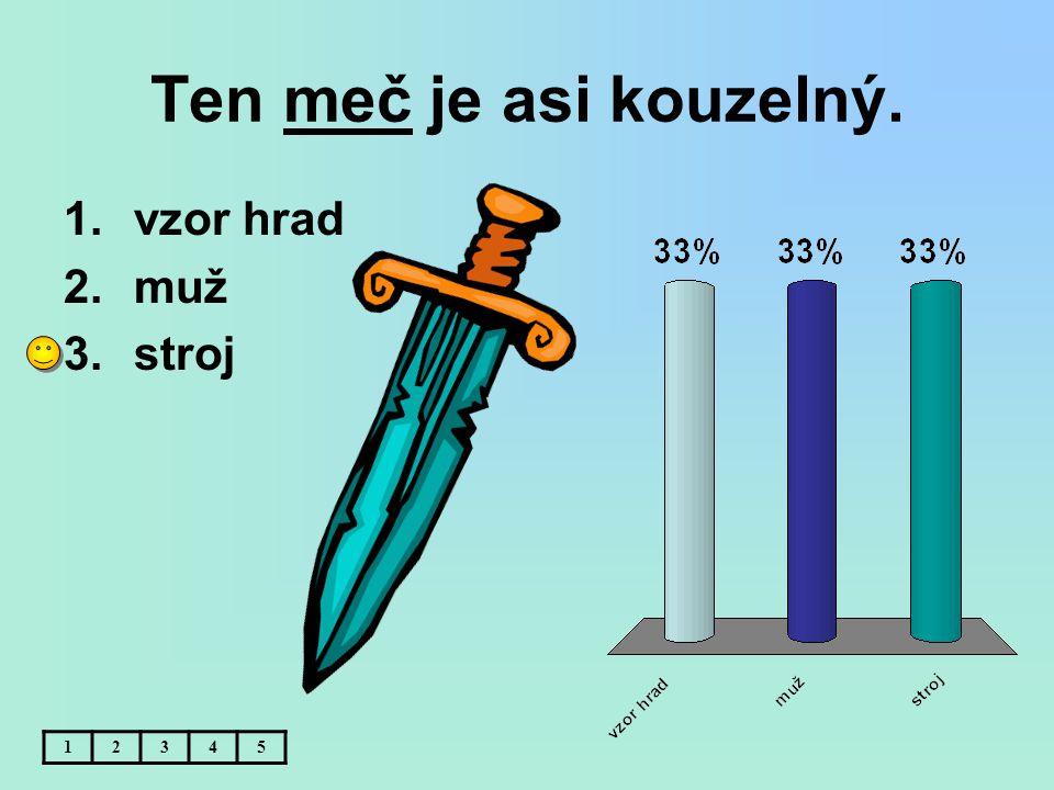 Ten meč je asi kouzelný. 12345 1.vzor hrad 2.muž 3.stroj