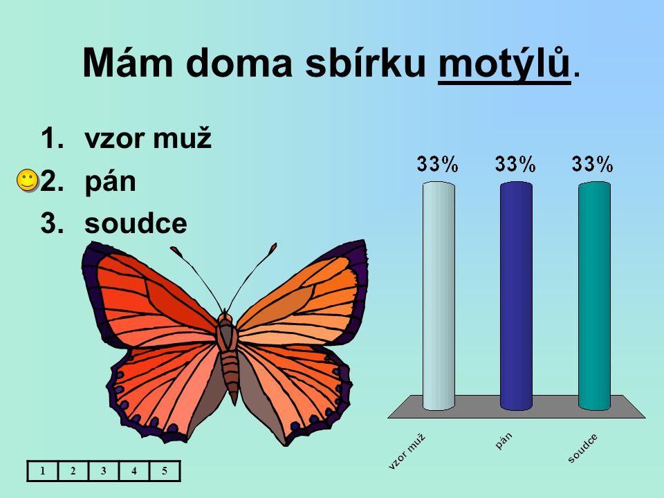 Mám doma sbírku motýlů. 1.vzor muž 2.pán 3.soudce 12345