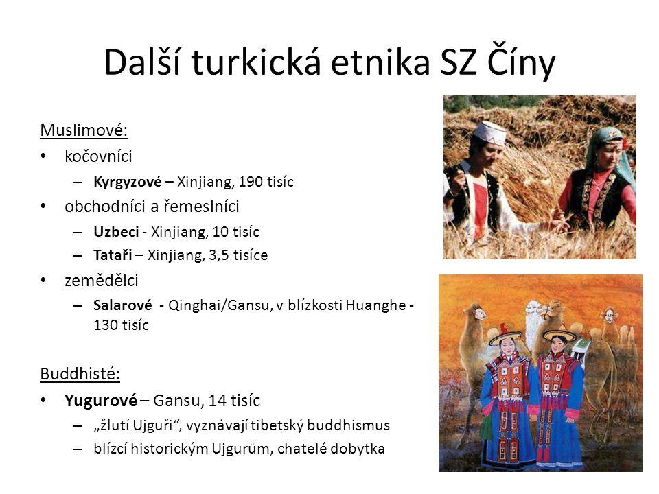 Další turkická etnika SZ Číny Muslimové: kočovníci – Kyrgyzové – Xinjiang, 190 tisíc obchodníci a řemeslníci – Uzbeci - Xinjiang, 10 tisíc – Tataři –