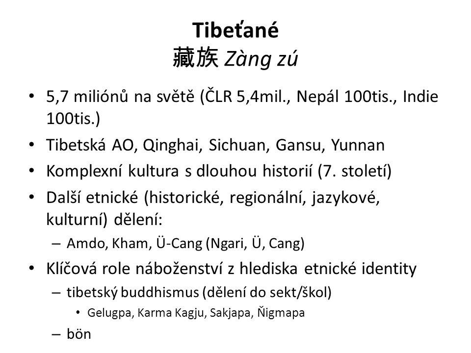 Tibeťané 藏族 Zàng zú 5,7 miliónů na světě (ČLR 5,4mil., Nepál 100tis., Indie 100tis.) Tibetská AO, Qinghai, Sichuan, Gansu, Yunnan Komplexní kultura s