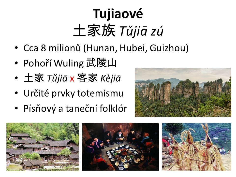 Tujiaové 土家族 Tǔjiā zú Cca 8 milionů (Hunan, Hubei, Guizhou) Pohoří Wuling 武陵山 土家 Tǔjiā x 客家 Kèjiā Určité prvky totemismu Písňový a taneční folklór