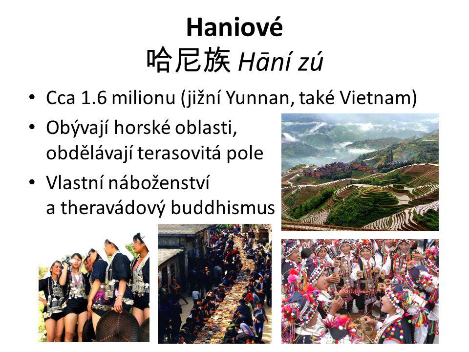 Haniové 哈尼族 Hāní zú Cca 1.6 milionu (jižní Yunnan, také Vietnam) Obývají horské oblasti, obdělávají terasovitá pole Vlastní náboženství a theravádový