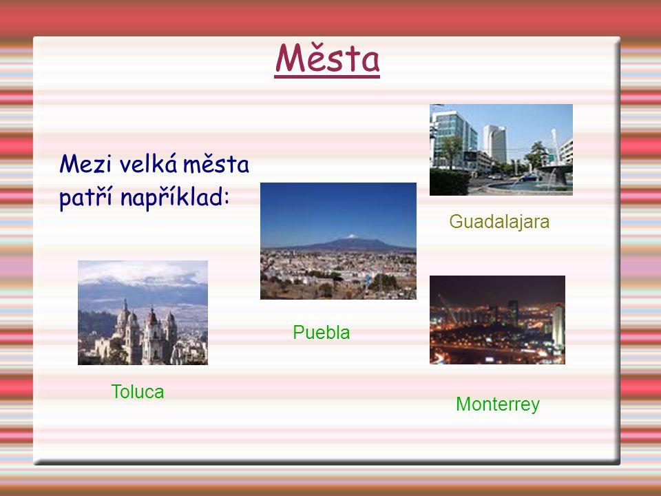 Města Mezi velká města patří například: Guadalajara Monterrey Puebla Toluca