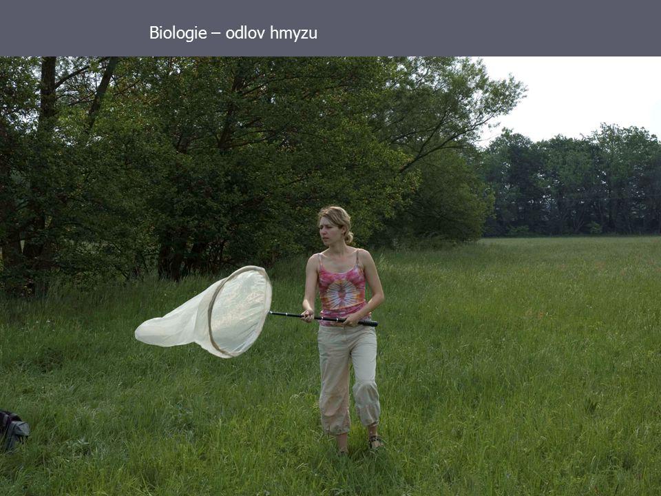 Didaktika přírodních věd25 Biologie – odlov hmyzu