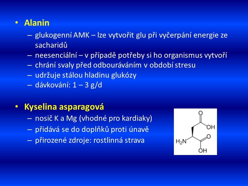 Alanin – glukogenní AMK – lze vytvořit glu při vyčerpání energie ze sacharidů – neesenciální – v případě potřeby si ho organismus vytvoří – chrání sva