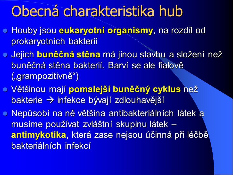 Myiáza http://www.akhila.nl/docs/cavia/ziekte n/images/myasis-a.jpg