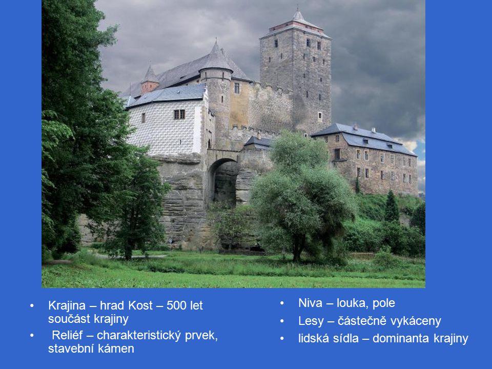 Niva – louka, pole Lesy – částečně vykáceny lidská sídla – dominanta krajiny Krajina – hrad Kost – 500 let součást krajiny Reliéf – charakteristický prvek, stavební kámen