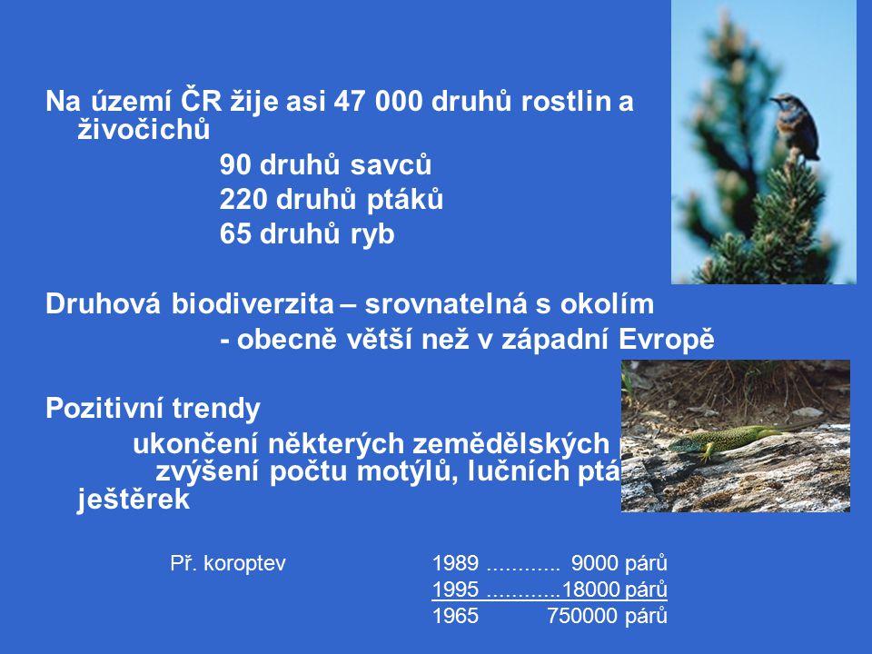 Na území ČR žije asi 47 000 druhů rostlin a živočichů 90 druhů savců 220 druhů ptáků 65 druhů ryb Druhová biodiverzita – srovnatelná s okolím - obecně větší než v západní Evropě Pozitivní trendy ukončení některých zemědělských postupů zvýšení počtu motýlů, lučních ptáků, ještěrek Př.