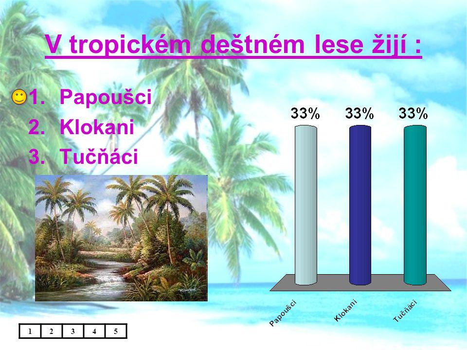 V tropickém deštném lese žijí : 12345 1.Papoušci 2.Klokani 3.Tučňáci