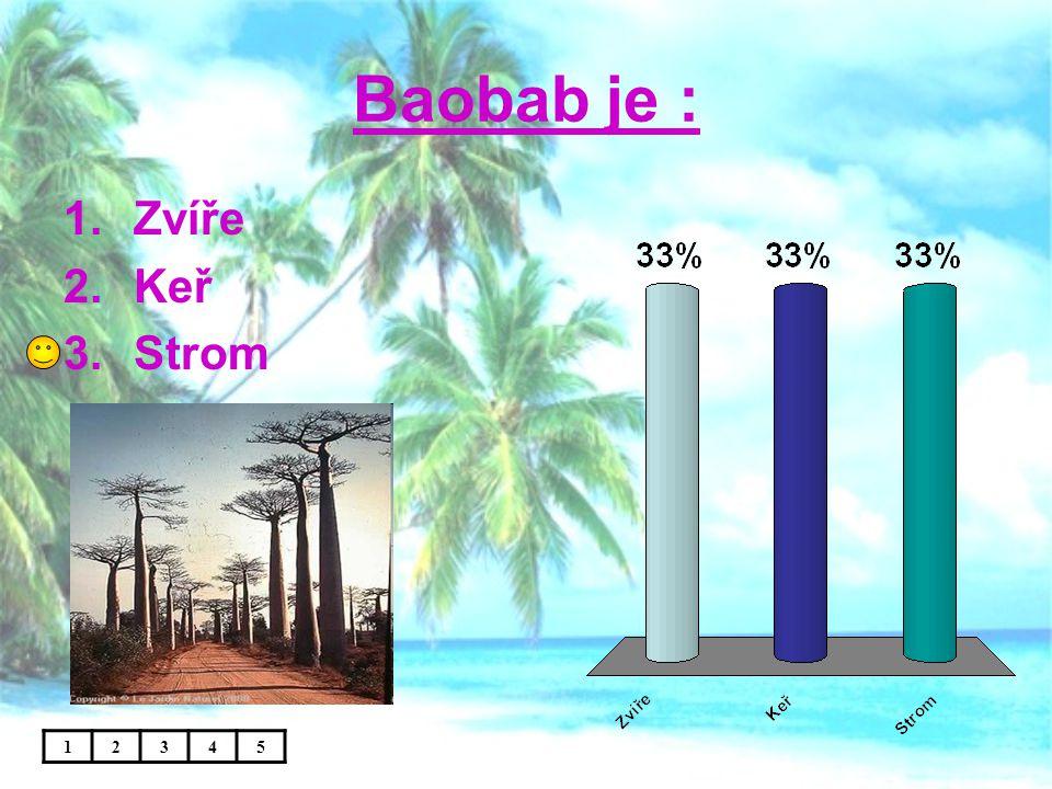 Baobab je : 12345 1.Zvíře 2.Keř 3.Strom