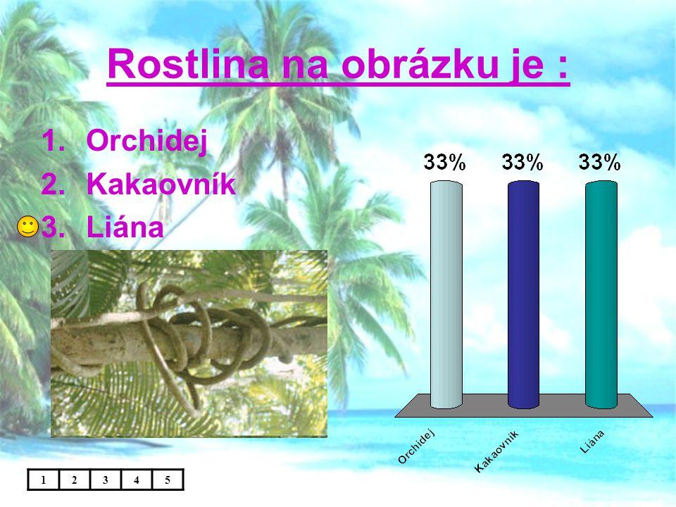 V tropických lesích rostou: 1.Bavlník, podzemnice olejná 2.Palmy, orchideje, liány 3.Palmy, traviny, mechy 12345