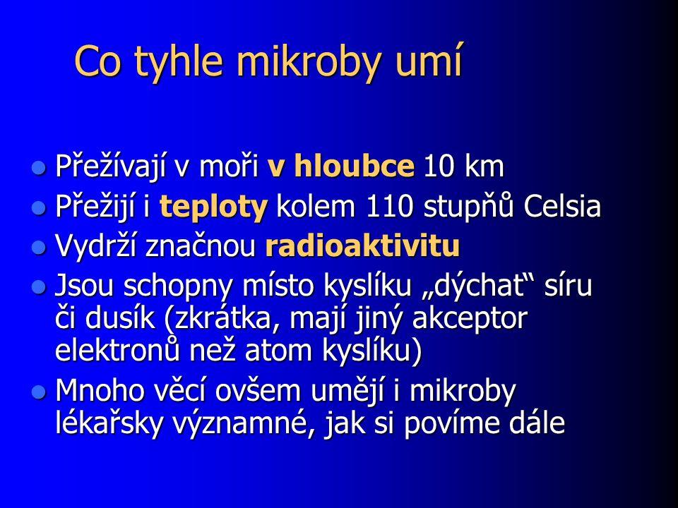 """Co tyhle mikroby umí Přežívají v moři v hloubce 10 km Přežívají v moři v hloubce 10 km Přežijí i teploty kolem 110 stupňů Celsia Přežijí i teploty kolem 110 stupňů Celsia Vydrží značnou radioaktivitu Vydrží značnou radioaktivitu Jsou schopny místo kyslíku """"dýchat síru či dusík (zkrátka, mají jiný akceptor elektronů než atom kyslíku) Jsou schopny místo kyslíku """"dýchat síru či dusík (zkrátka, mají jiný akceptor elektronů než atom kyslíku) Mnoho věcí ovšem umějí i mikroby lékařsky významné, jak si povíme dále Mnoho věcí ovšem umějí i mikroby lékařsky významné, jak si povíme dále"""