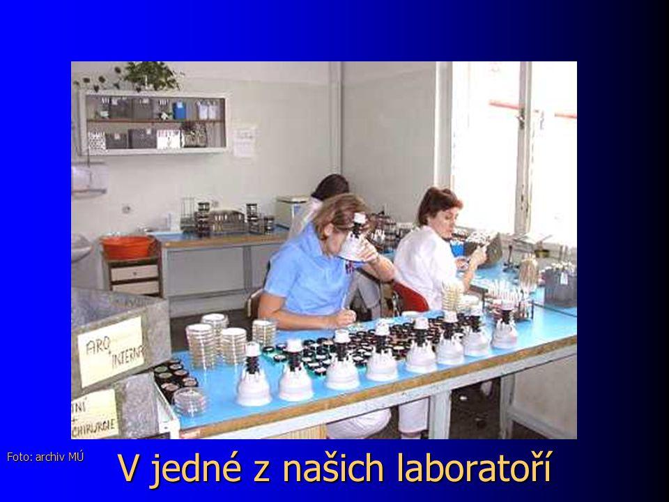 V jedné z našich laboratoří Foto: archiv MÚ