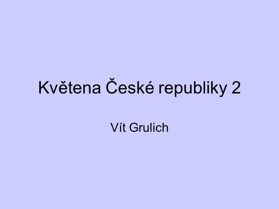 Květena České republiky 2 Vít Grulich