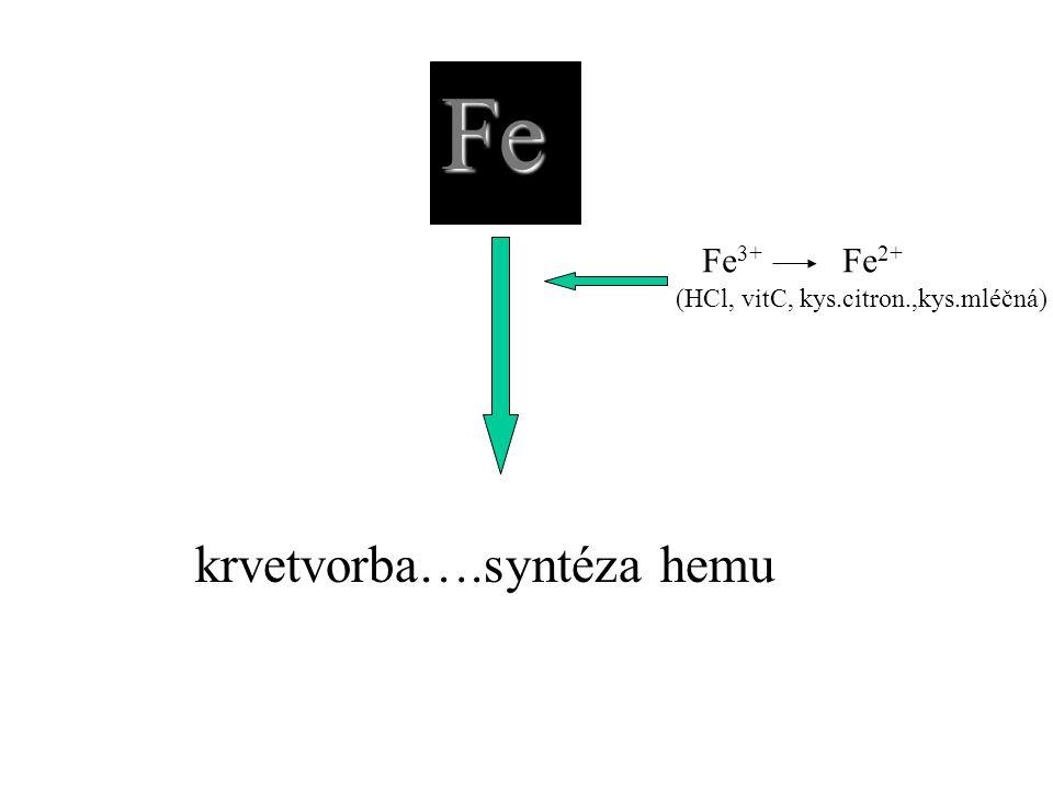 Fe Fe 3+ Fe 2+ (HCl, vitC, kys.citron.,kys.mléčná)