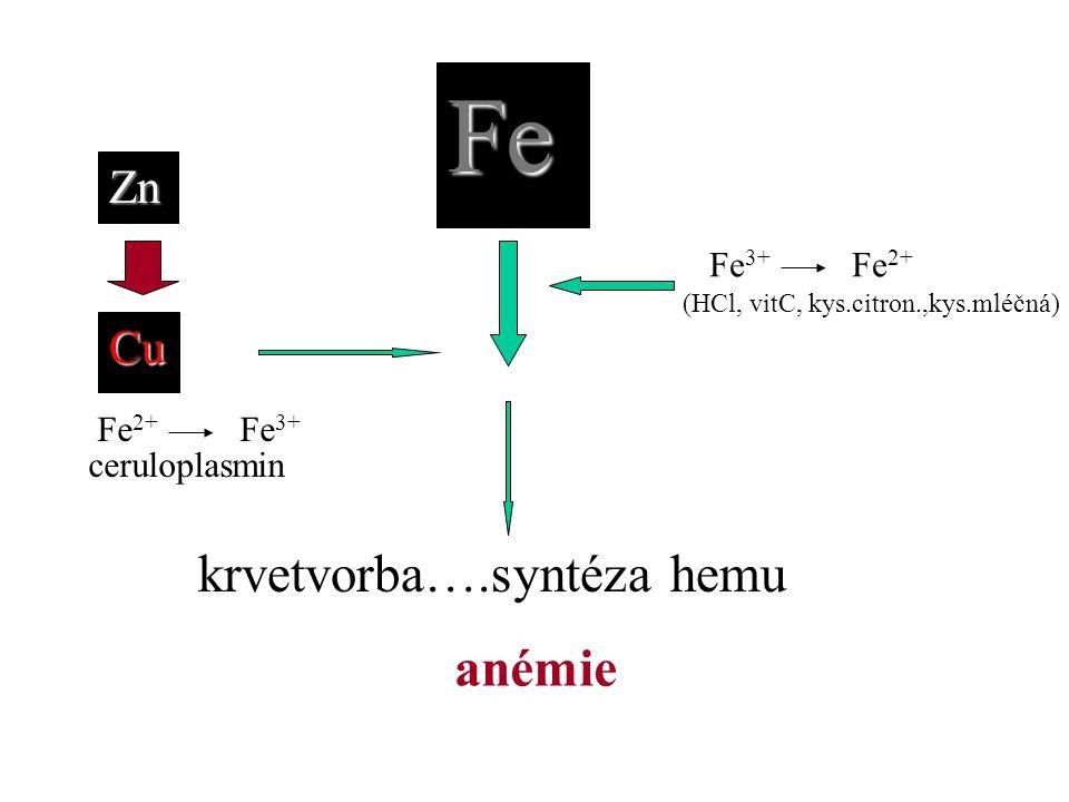 Fe krvetvorba….syntéza hemu Cu anémie Fe 3+ Fe 2+ (HCl, vitC, kys.citron.,kys.mléčná) ceruloplasmin Fe 2+ Fe 3+Zn