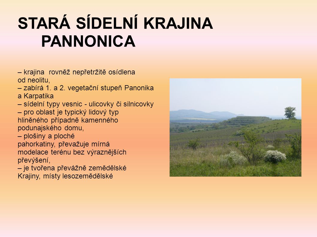 STARÁ SÍDELNÍ KRAJINA PANNONICA – krajina rovněž nepřetržitě osídlena od neolitu, – zabírá 1. a 2. vegetační stupeň Panonika a Karpatika – sídelní typ