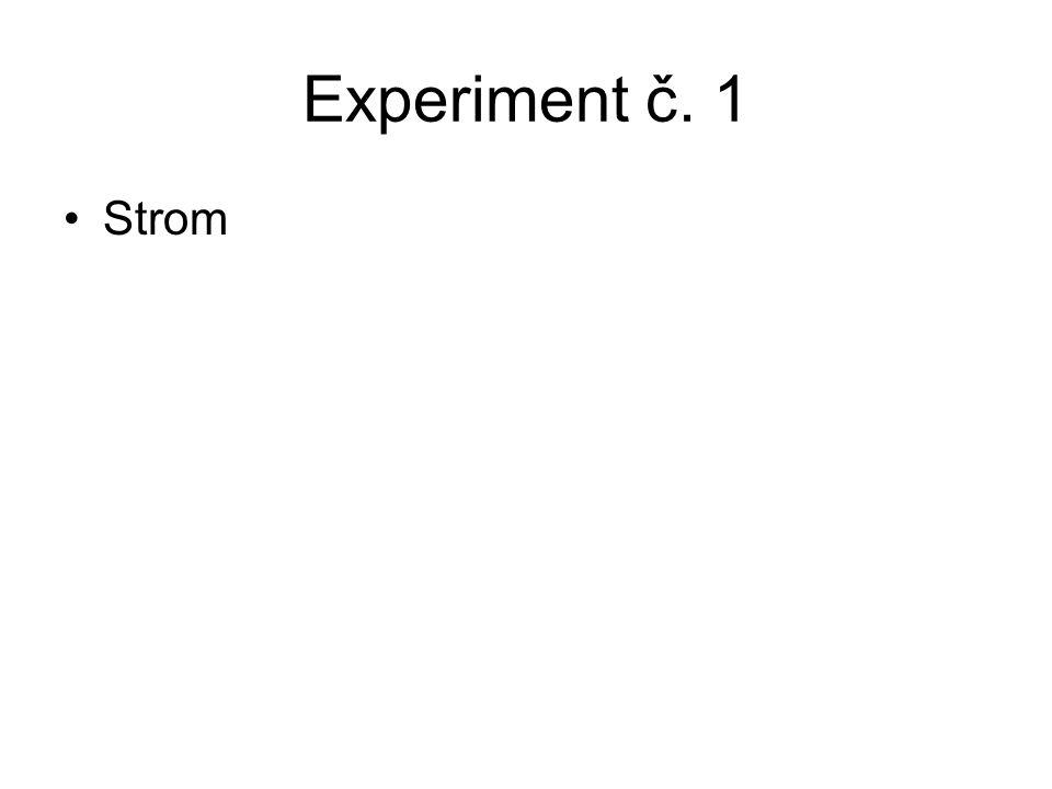 Experiment č. 1 Strom