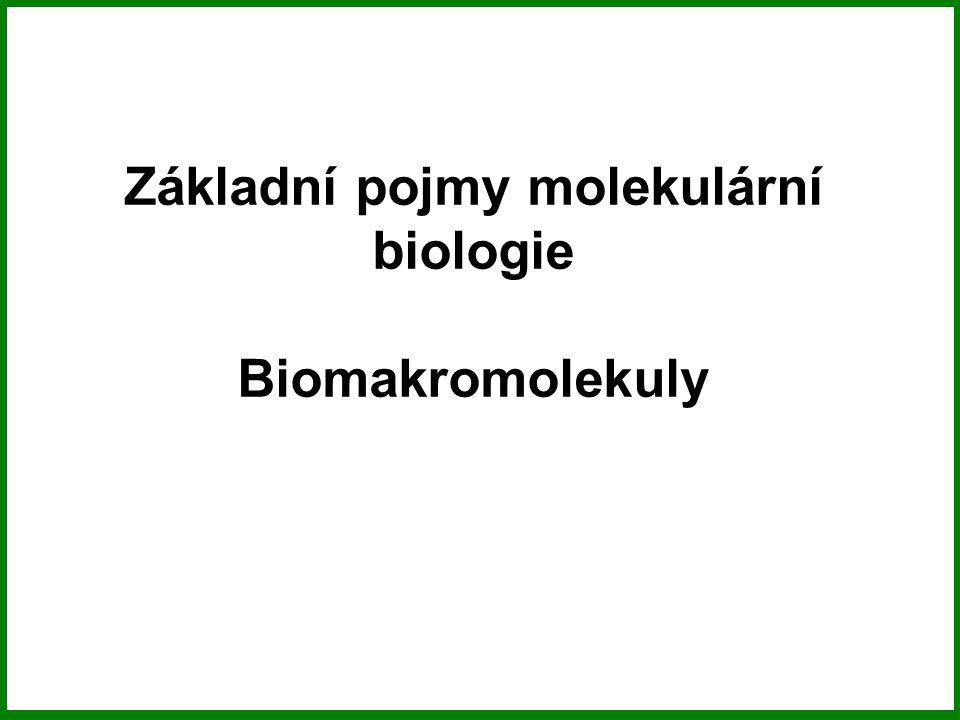Genom, genotyp, fenotyp Genom – soubor všech genů buňky nebo viru.