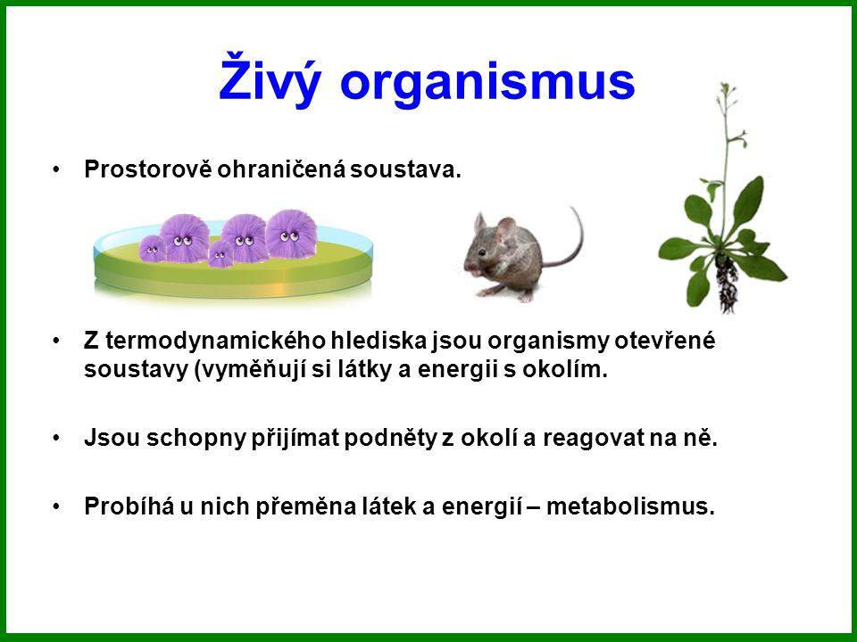 Živý organismus Prostorově ohraničená soustava.