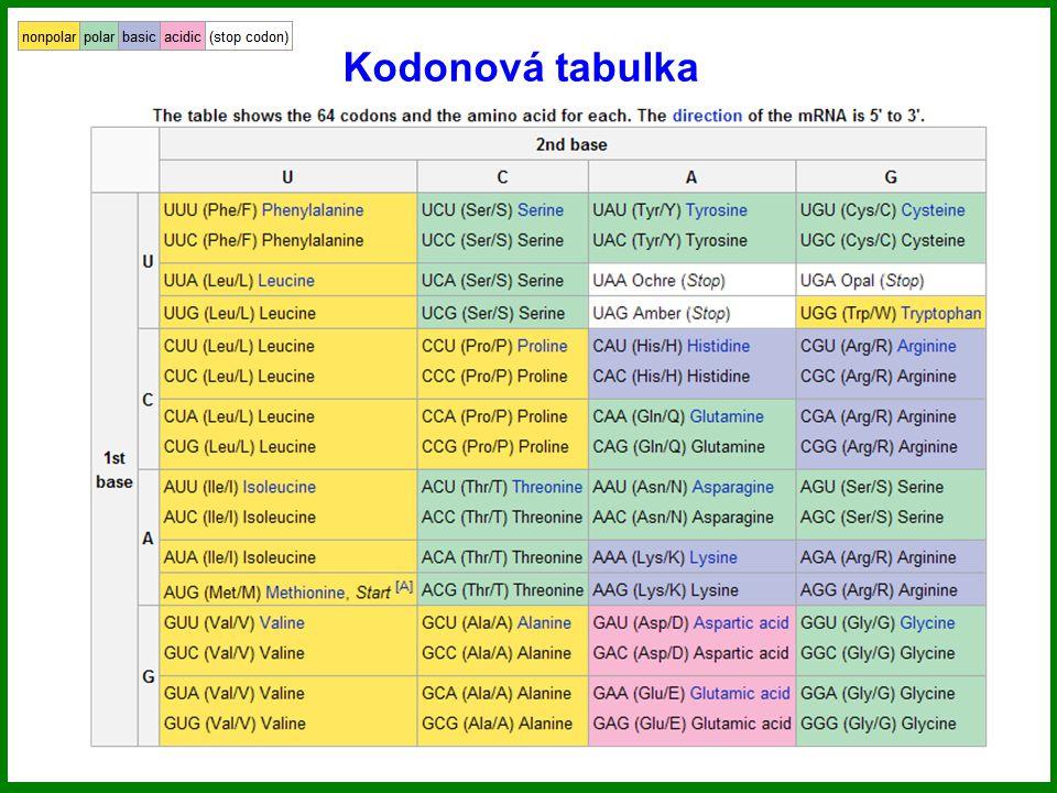 Kodonová tabulka