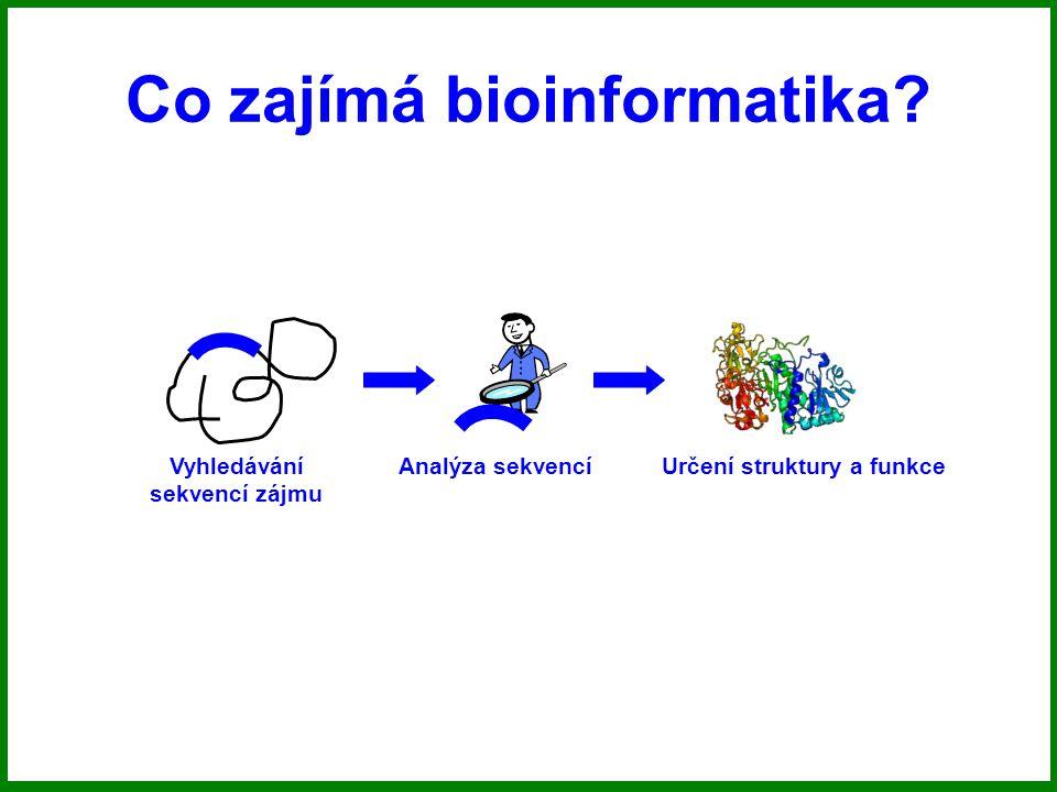 Co zajímá bioinformatika? Vyhledávání sekvencí zájmu Analýza sekvencíUrčení struktury a funkce