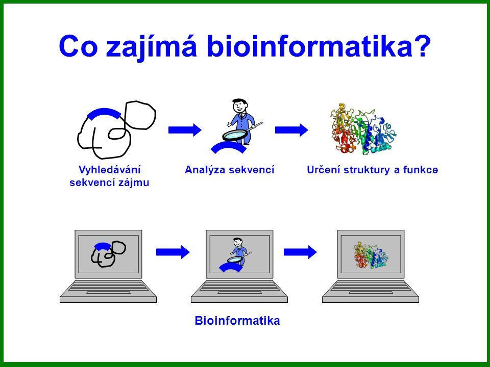 Vyhledávání sekvencí zájmu Analýza sekvencíUrčení struktury a funkce Bioinformatika Experiment