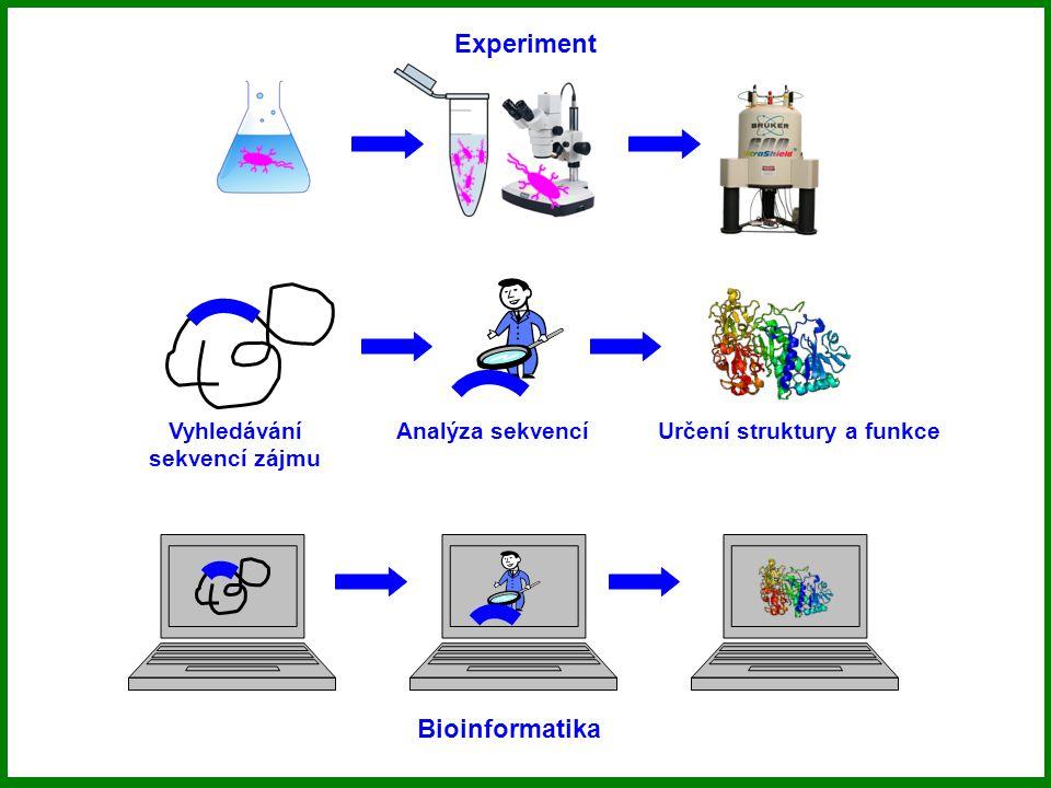 Bioinformatika Experiment Za vším hledej biologický problém!