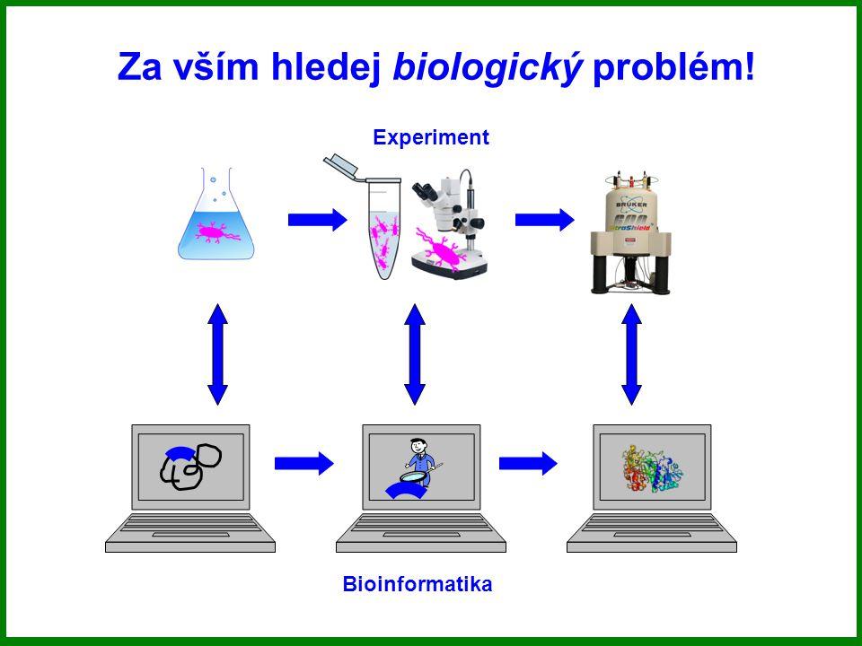 Genetická informace DNA RNA Proteiny DNA Replikace Transkripce Translace Exprese genetické informace je složitý, vysoce regulovaný děj zprostředkovaný enzymy (proteiny).