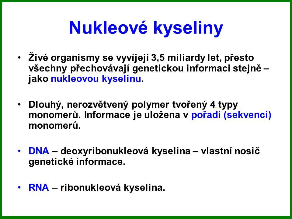 Nukleové kyseliny Živé organismy se vyvíjejí 3,5 miliardy let, přesto všechny přechovávají genetickou informaci stejně – jako nukleovou kyselinu.
