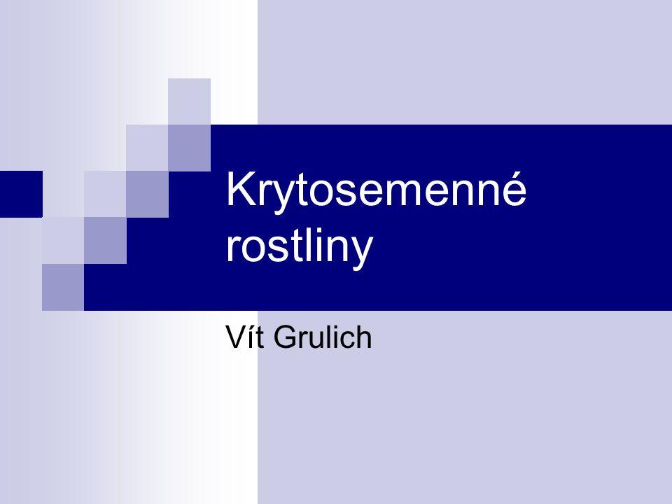 Cicerbita alpina Lactuca viminea