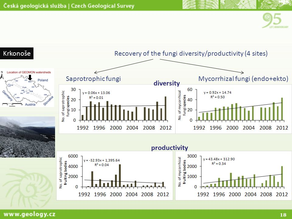 18 KrkonošeRecovery of the fungi diversity/productivity (4 sites) Mycorrhizal fungi (endo+ekto)Saprotrophic fungi diversity productivity