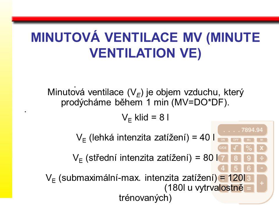 MINUTOVÁ VENTILACE MV (MINUTE VENTILATION VE) Minutová ventilace (V E ) je objem vzduchu, který prodýcháme během 1 min (MV=DO*DF). V E klid = 8 l V E