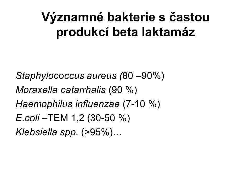 Významné bakterie s častou produkcí beta laktamáz Staphylococcus aureus (80 –90%) Moraxella catarrhalis (90 %) Haemophilus influenzae (7-10 %) E.coli