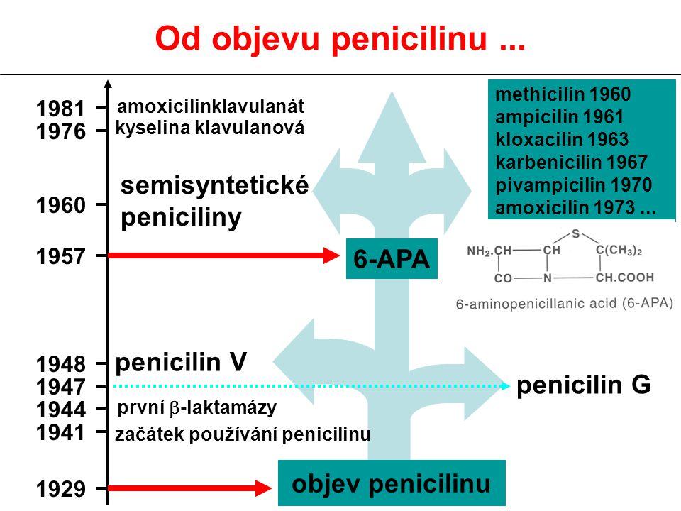 penicilin G penicilin V semisyntetické peniciliny 1960 1957 1948 1947 Od objevu penicilinu... methicilin 1960 ampicilin 1961 kloxacilin 1963 karbenici