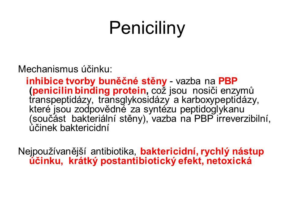 Peniciliny Mechanismus účinku: inhibice tvorby buněčné stěny - vazba na PBP (penicilin binding protein, což jsou nosiči enzymů transpeptidázy, transgl