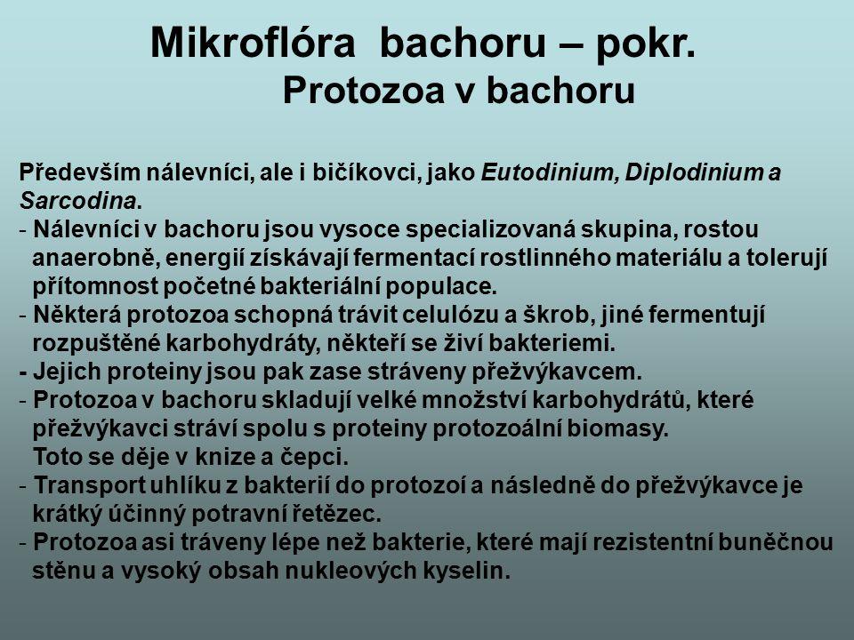 Mikroflóra bachoru – pokr. Protozoa v bachoru Především nálevníci, ale i bičíkovci, jako Eutodinium, Diplodinium a Sarcodina. - Nálevníci v bachoru js