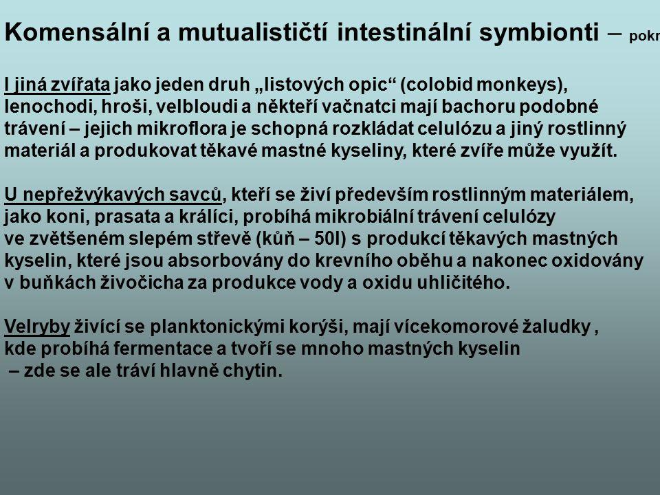 """Komensální a mutualističtí intestinální symbionti – pokr. I jiná zvířata jako jeden druh """"listových opic"""" (colobid monkeys), lenochodi, hroši, velblou"""