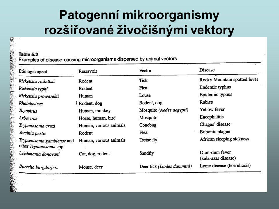 Patogenní mikroorganismy rozšiřované živočišnými vektory