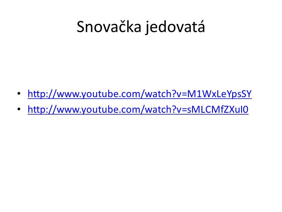 Snovačka jedovatá http://www.youtube.com/watch?v=M1WxLeYpsSY http://www.youtube.com/watch?v=sMLCMfZXuI0