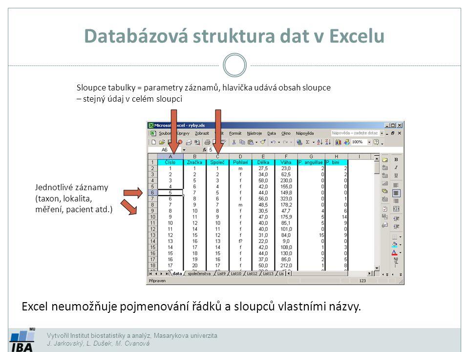 Vytvořil Institut biostatistiky a analýz, Masarykova univerzita J. Jarkovský, L. Dušek, M. Cvanová Databázová struktura dat v Excelu Jednotlivé záznam