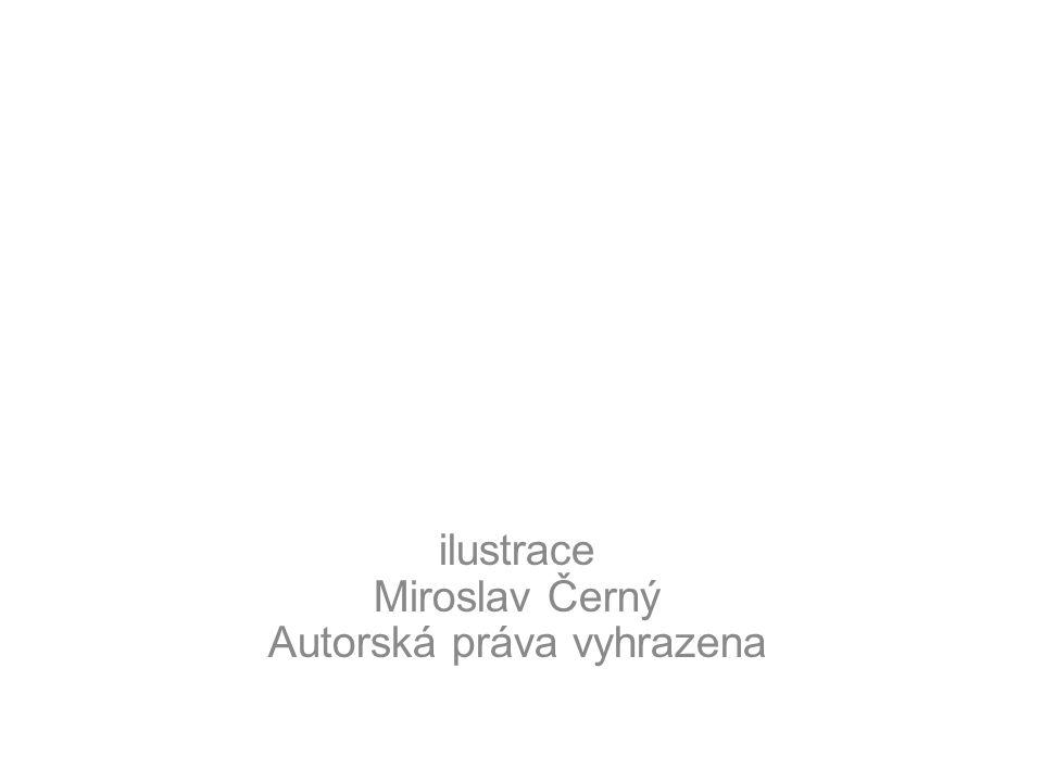 ilustrace Miroslav Černý Autorská práva vyhrazena